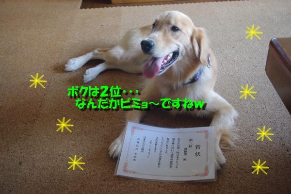 IMGP3595_20101010002201.jpg