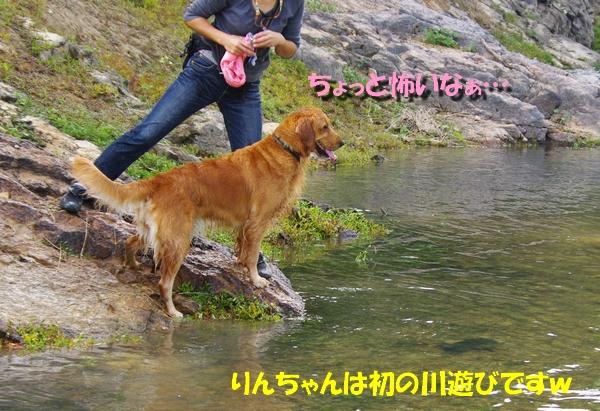 IMGP3879_20101013235415.jpg