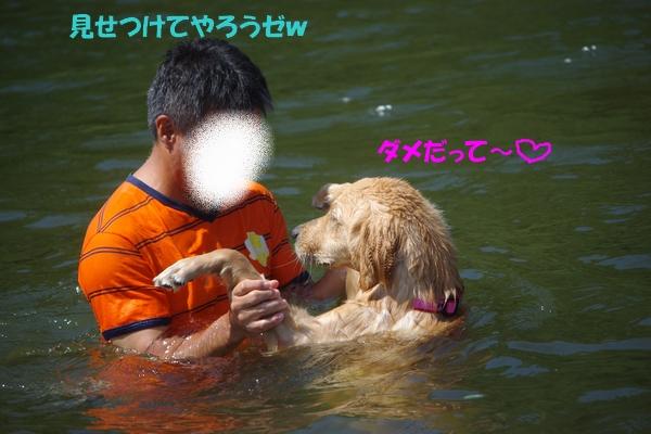 IMGP8837_20100730000616.jpg