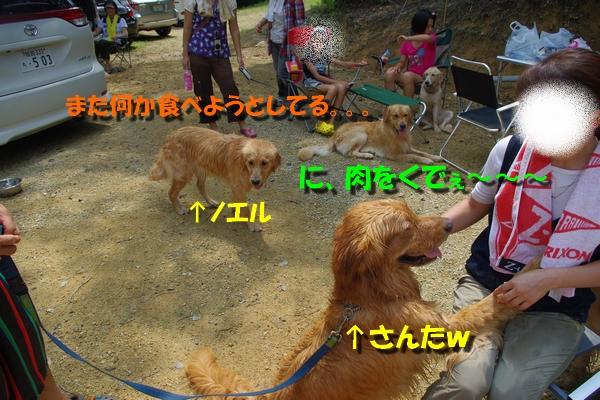 IMGP8932.jpg