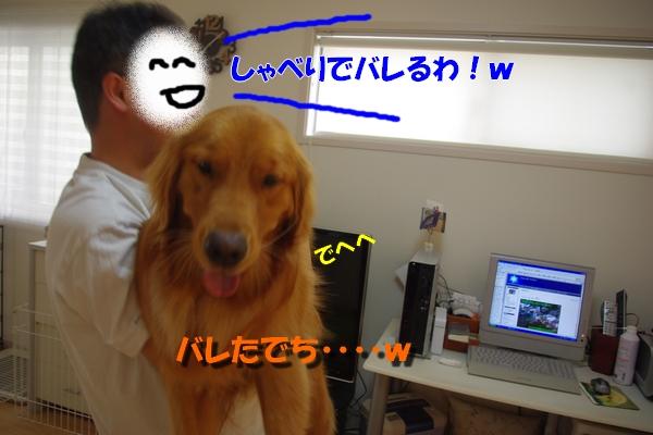 IMGP9492_20100814224053.jpg