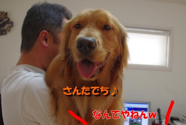IMGP9495_20100814224052.jpg