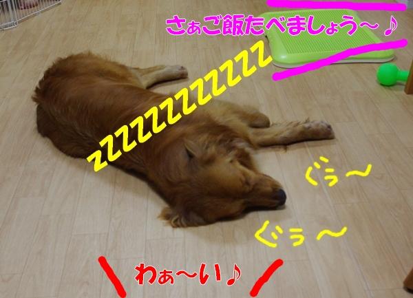 IMGP9756.jpg