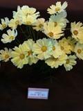 201110194.jpg