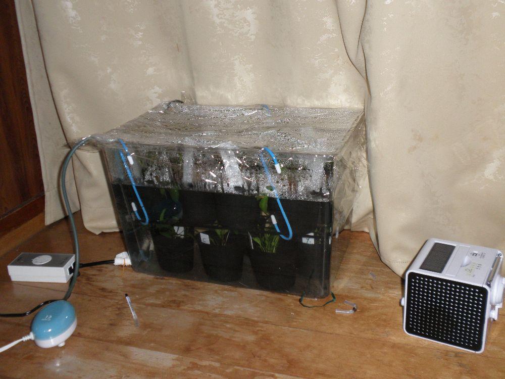 PC300030.jpg