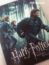 2010.11.27 ハリー・ポッター