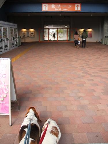 木曽三川公園センター011