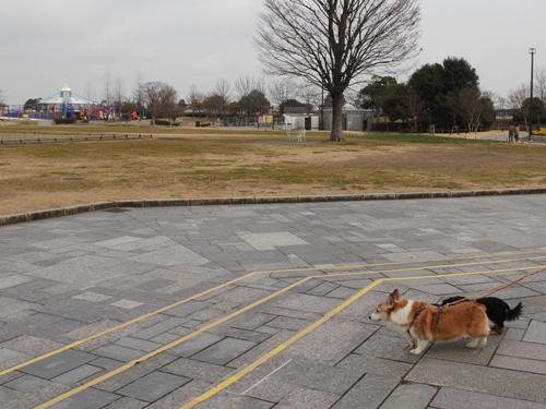 木曽三川公園センター012