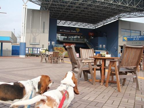 木曽三川公園センター010