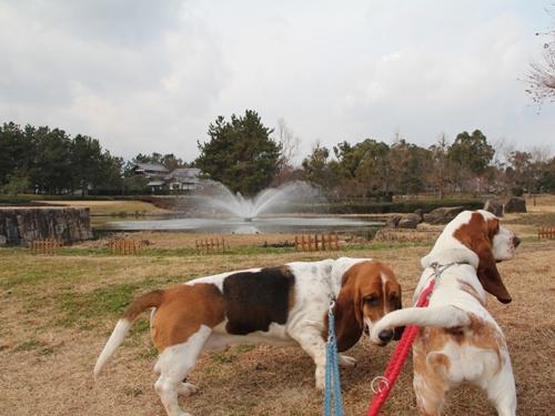 木曽三川公園センター013