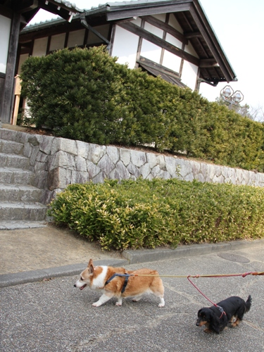木曽三川公園002