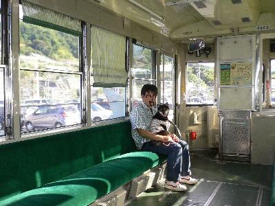 路面電車?