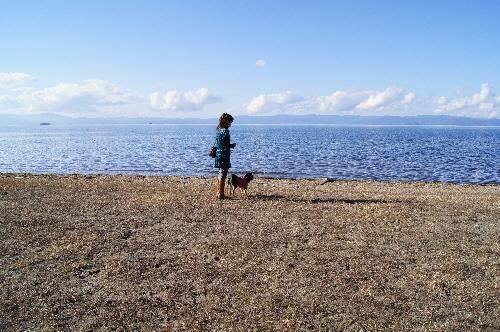 10.11,27 琵琶湖01