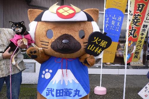 10.11.27 武田菱丸01