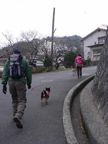 11.02.27 牛田山登山 03
