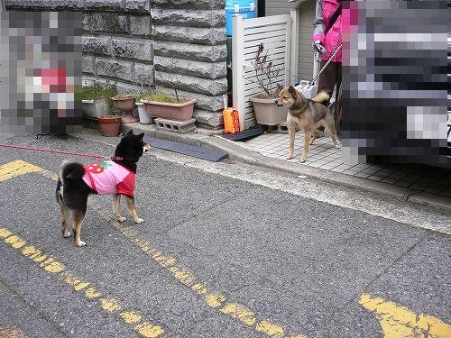 11.02.27 牛田山登山 02