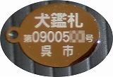 11.03.21 迷子札 003