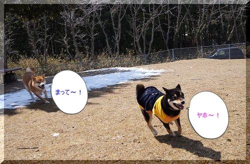 11.03.26 七塚原SA 1