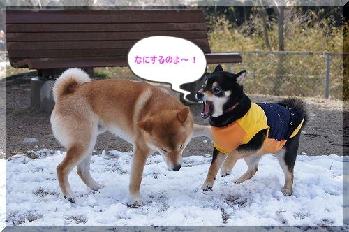 11.03.26 七塚原SA 5
