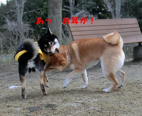11.03.26 七塚原SA 05