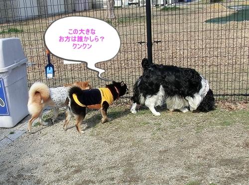 11.03.26 七塚原SA 13