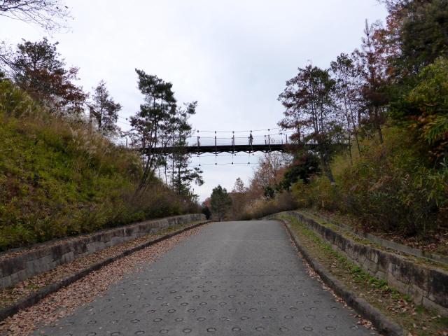 峠の吊橋/錦織公園1