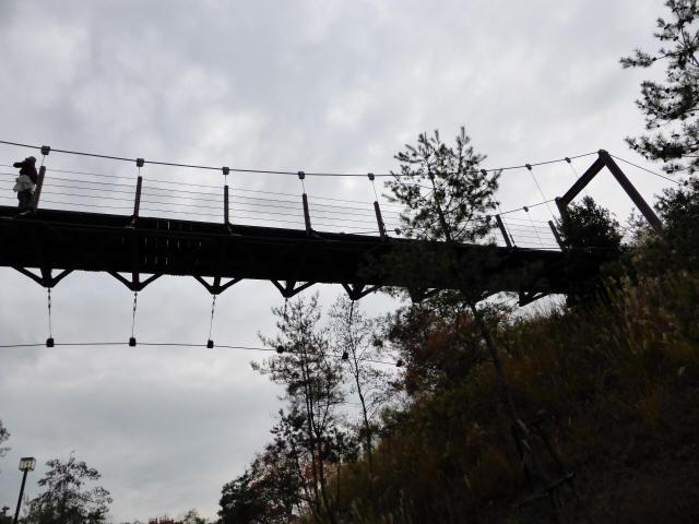 峠の吊橋/錦織公園2