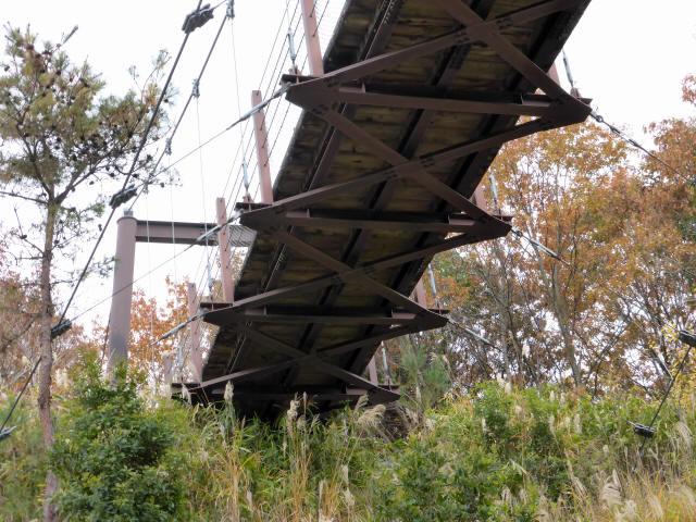 峠の吊橋/錦織公園3