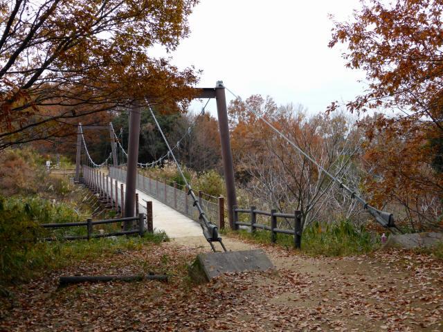 峠の吊橋/錦織公園4