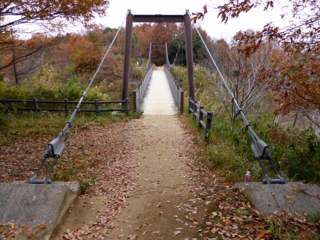 峠の吊橋/錦織公園5