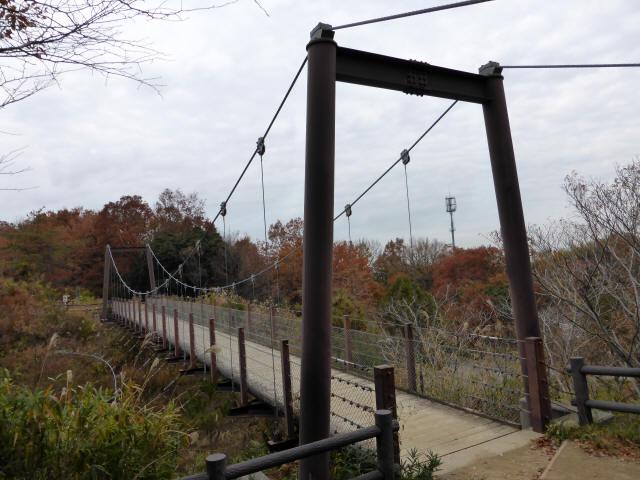 峠の吊橋/錦織公園6