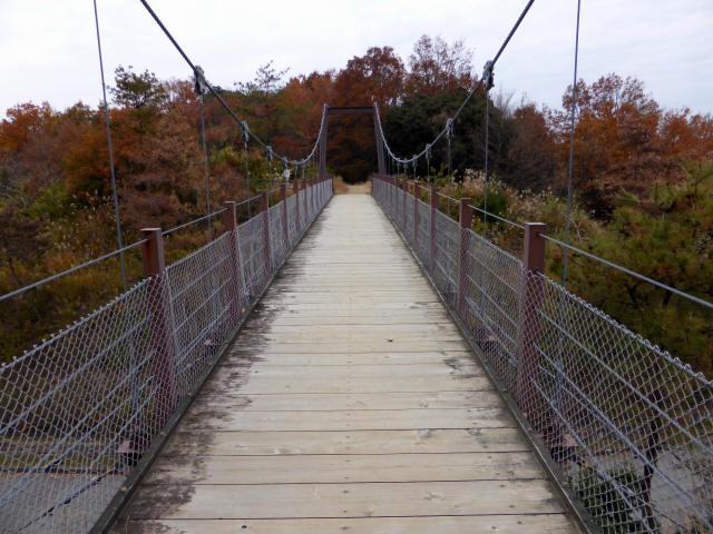 峠の吊橋/錦織公園7