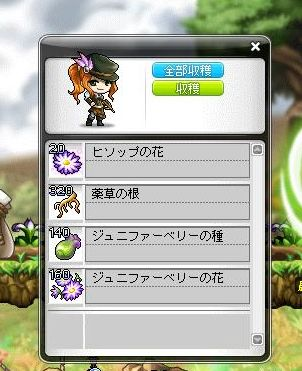 Maple120309_075559.jpg