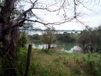 開平橋と荒川