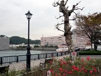 横須賀海軍工廠の跡地