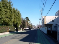 岩槻駅前の道路