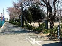 三叉路から望む古道