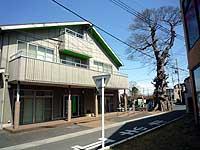 東町会館とむくの木