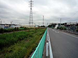 国体橋の下を流れる芝川