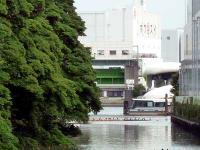 汐留川下流