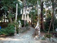 中田八坂神社 夫婦杉