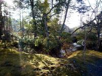 高蔵寺 庭園