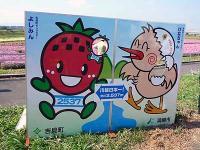 川幅日本一看板