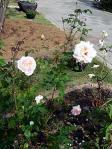 花久の里庭園