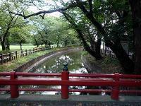 神橋と見沼代用水路