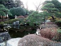 心字池と庭園
