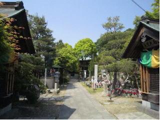 0506-koushouji1.jpg