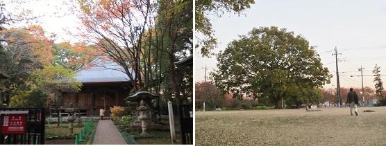 b1123-9 観音堂-寺跡