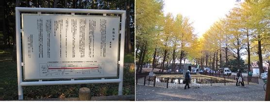 b1123-5n 中央公園-鷹の台駅