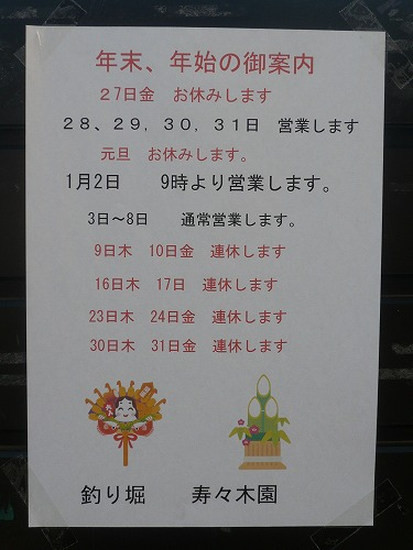 P1100279.jpg